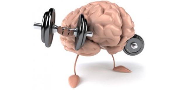 mozak1